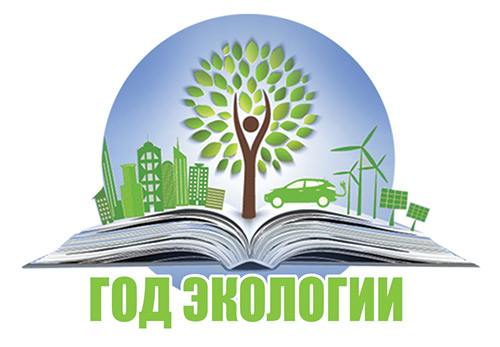 logo_eco_year
